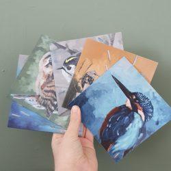 vogel kaarten