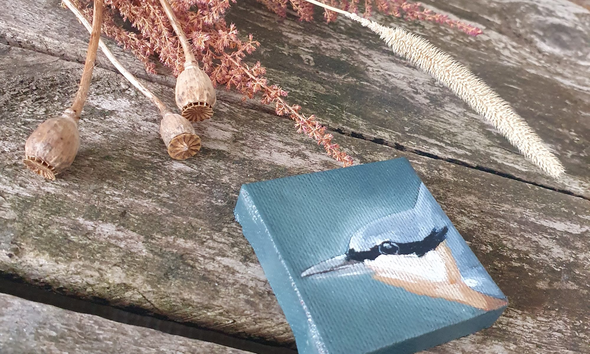 nuthatch painting bird art wildlife